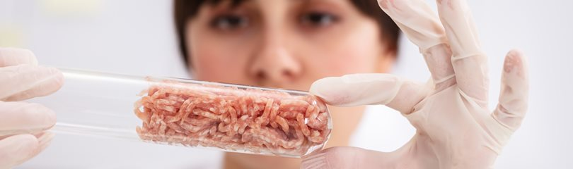 Cultured Meat Facts