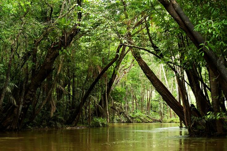 58 Interesting Facts About Brazil Factretriever Com