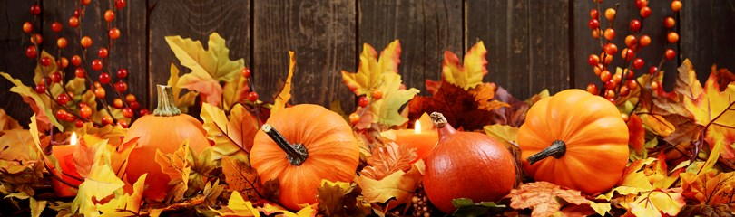 42 Colorful Facts About Fall Autumn Factretriever Com