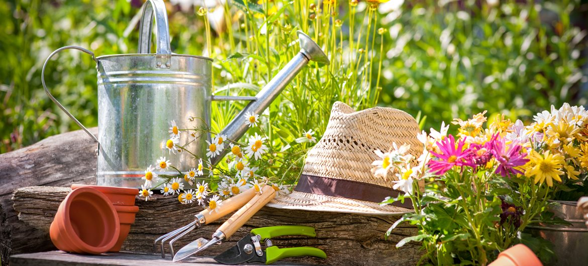 47 Cultivating Facts about Gardening | Fact Retriever