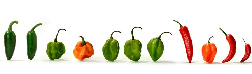 Hot Pepper Facts