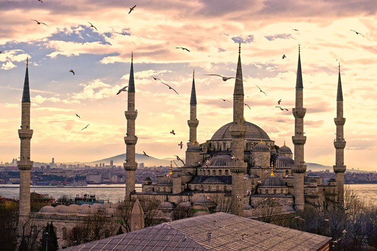 Birds flying above a mosque in Turkey during golden hour
