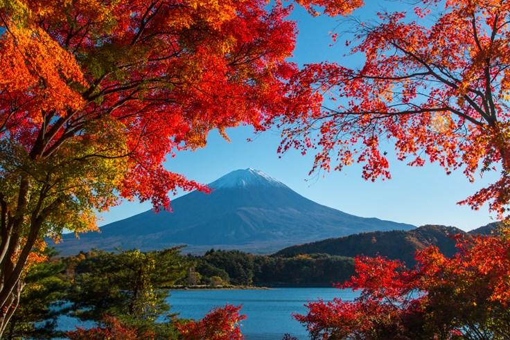 Interesting Mount Fuji Fact