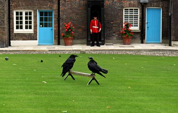 Interesting Tower of London Facts