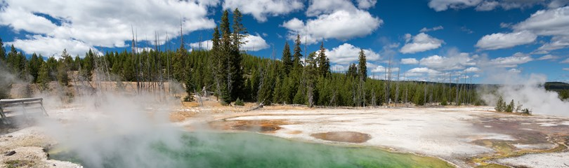 yellowstone national park buddhist dating site Yellowstone national park surpasses all other sites in the united states for its petrified wood, for here is found large amounts of it, in an exquisite state of.